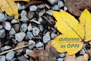 I POMERIGGI FORMATIVI OPPI – autunno 2015